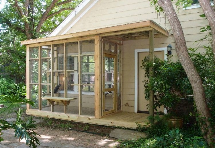 Cat owners are building outdoor catio spaces for their