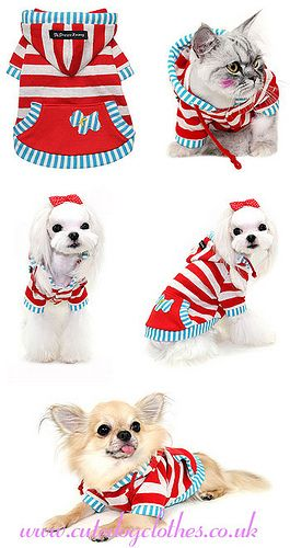 Jam Sandwiches Hoody2   by Cute Dog Clothes