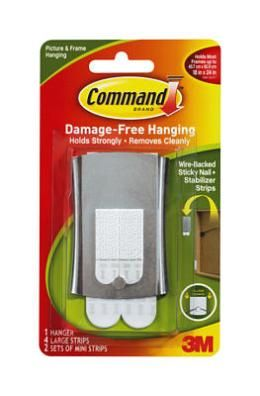 Command strips- hang pictures no holes...