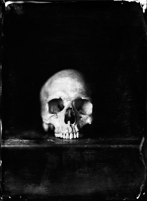 Skull photography by Jean-Baptiste Senegas - Skullspiration.com - skull designs, art, fashion and more