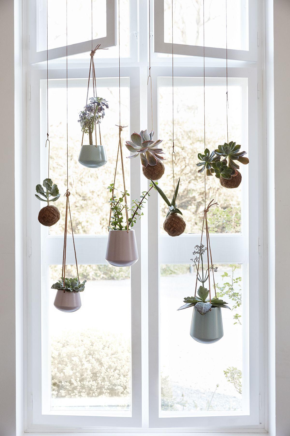 home decor | decoration | hanging plants | bohemian ...