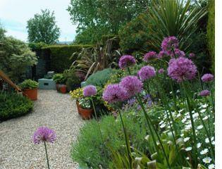 Saisonale Bepflanzung Im Wicklow Gartendesign Bepflanzung Kleinergartendeko Saisonale Wicklowgartend Garden Maintenance Garden Design Small Garden Design