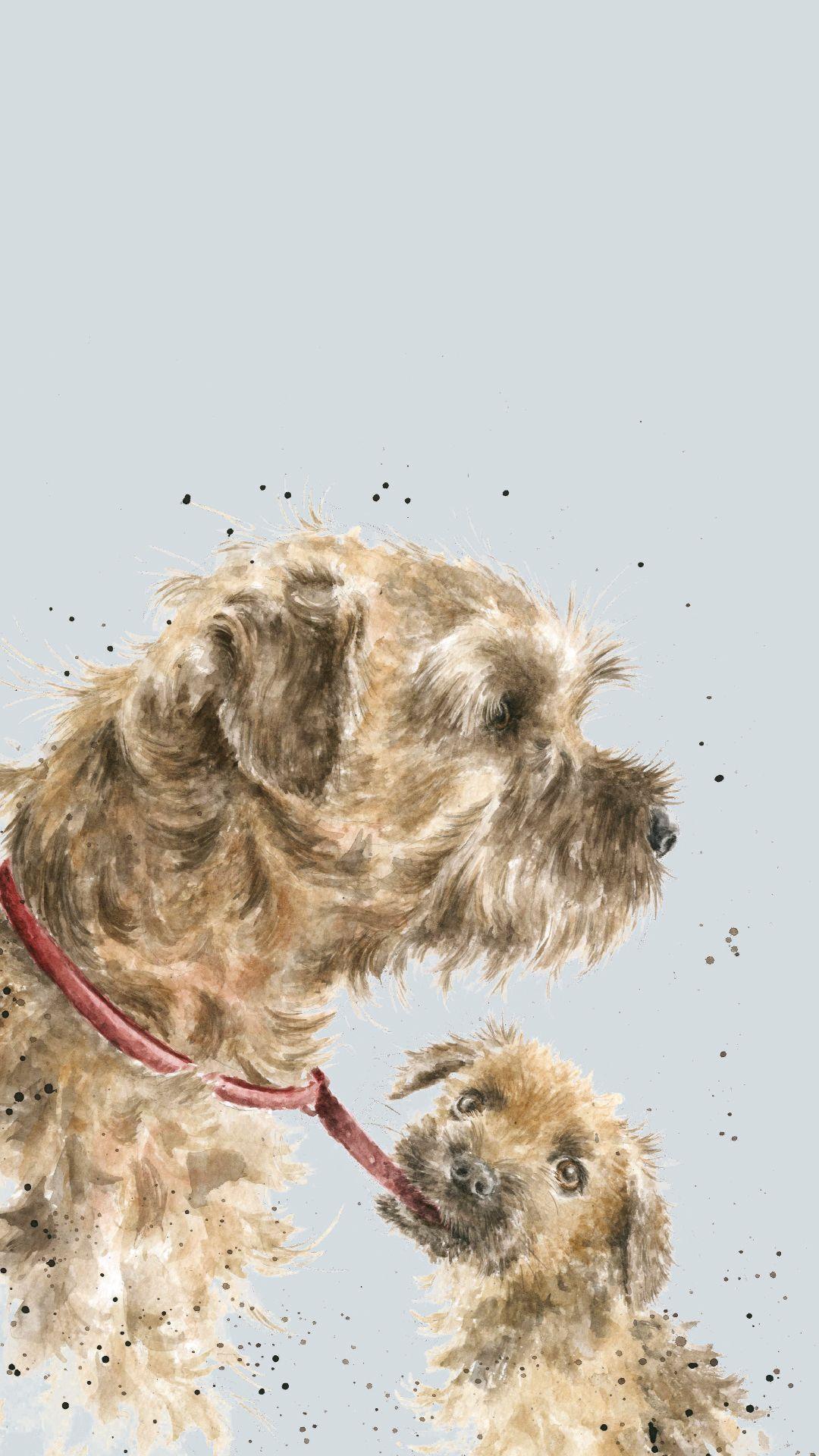 Border Terrier Phone Wallpaper