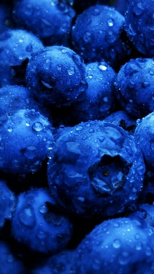 Blueberry Iphone Wallpaper From Line Deco Stunning Wallpapers Cute Backgrounds For Phones Fruit