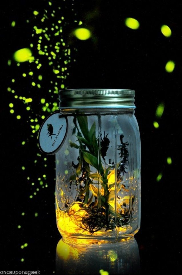 Electronic Lightning Brighten Grow Firefly in a Jar Bottle Gift Gadget birthday