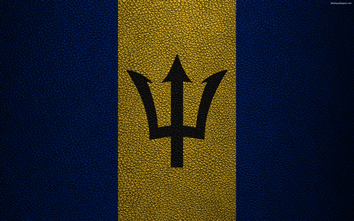Download Wallpapers Flag Of Barbados 4k Leather Texture North