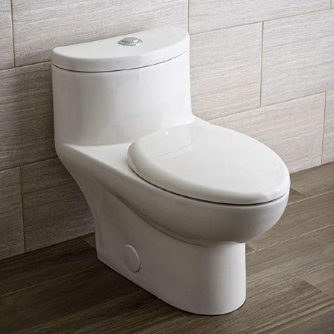 Tofino One Piece Dual Flush Toilet American Standard