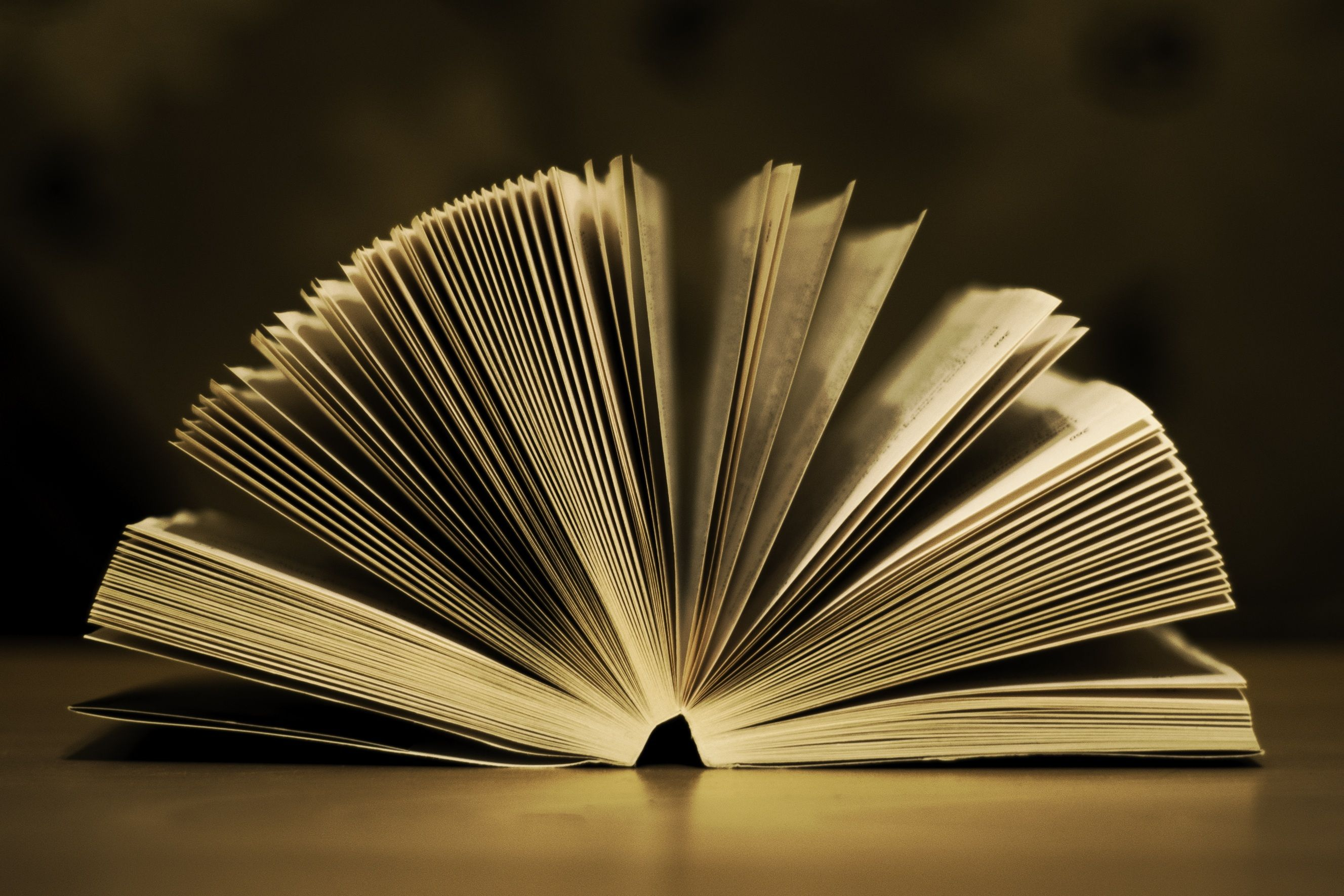Good Poems for People Who Think They Hate Poetry… 12 Books You Might Love! blog post by Bryn Donovan