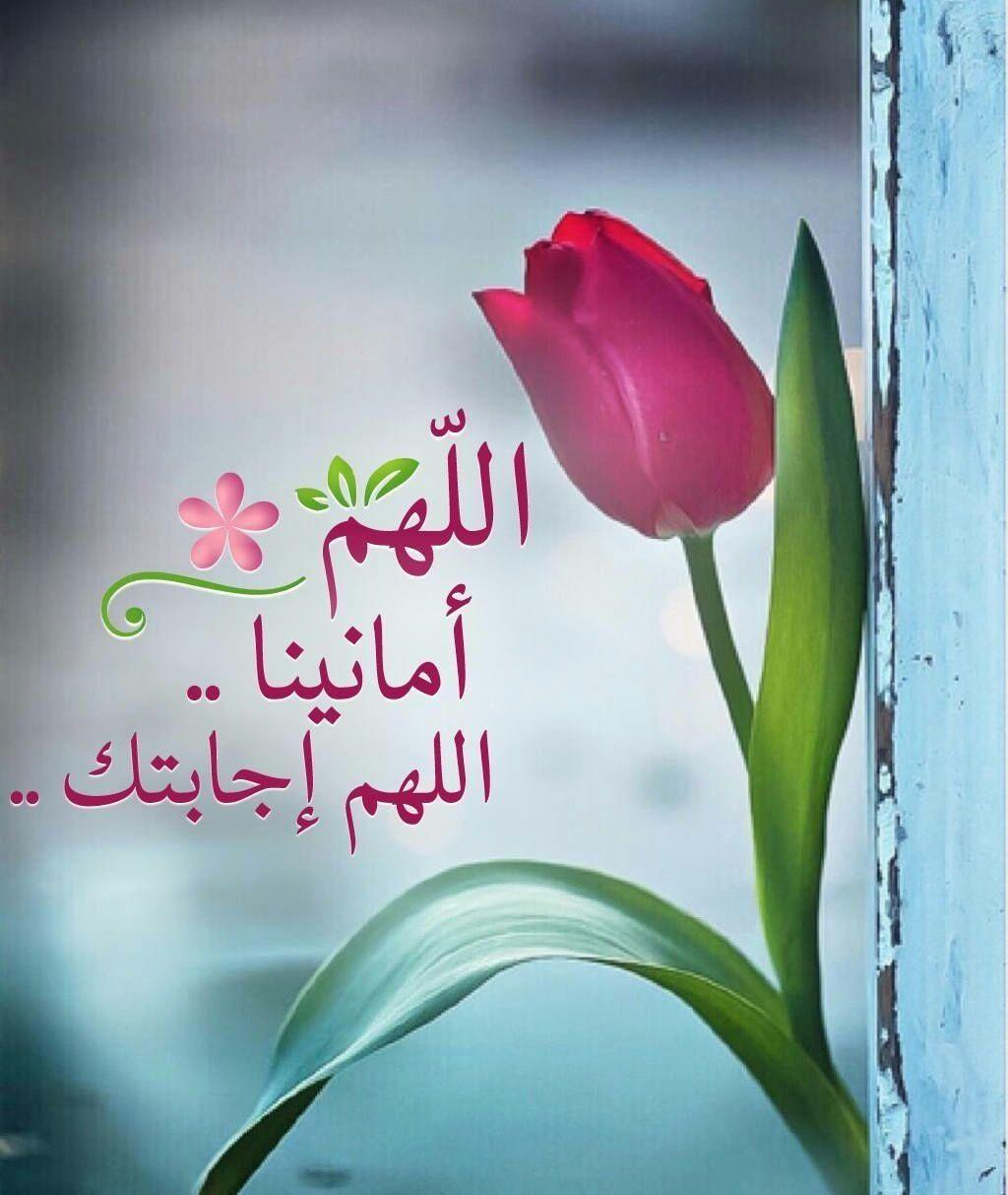 اذكار المسلم أذكر الله أين ما كنت Islamic Pictures Islam Quran Islam