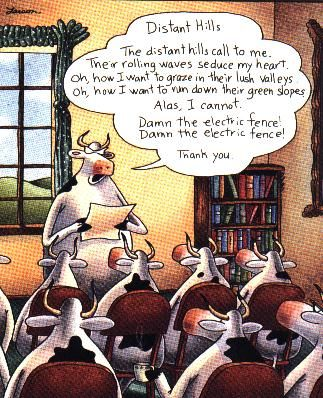 The far side gallery 5 google search misc stuff pinterest the far side gallery 5 google search bookmarktalkfo Images