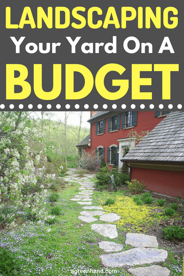 Landscaping Your Yard on a Budget   Front yard landscaping ...