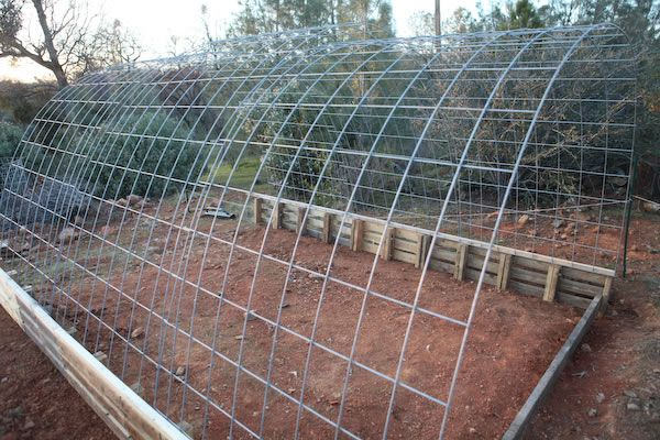 Building A Cattle Panel Pallet Greenhouse Peak