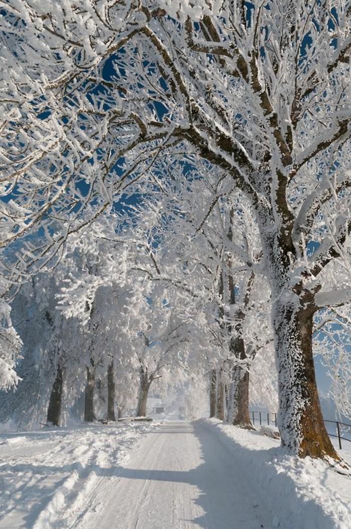 صور المناظر الطبيعية في فصل الشتاء مسار في الثلج In 2021 Fall Wallpaper Wallpaper Iphone Christmas Mountain Wallpaper