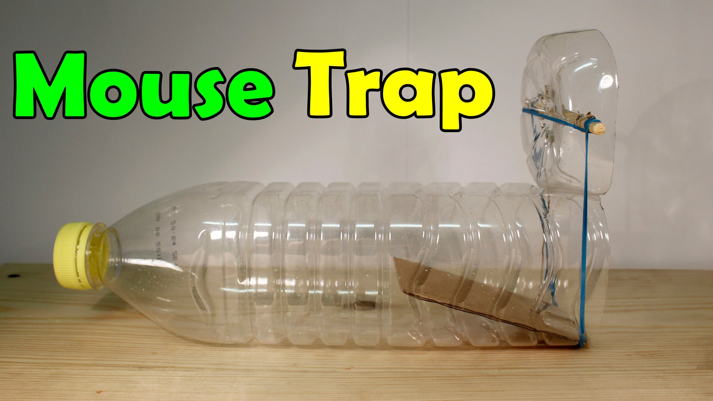 How to make a mouse trap - Homemade Trap | kid crafts ...