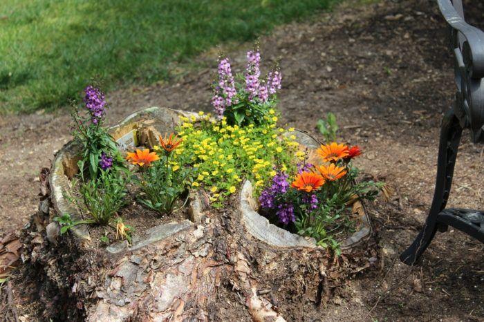 Pflanzen in schubladen baumstamm blumentopf wiesenblumen for Garten pflanzen idee