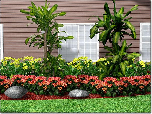 landscaping plants Gardening GROUP BOARD Pinterest