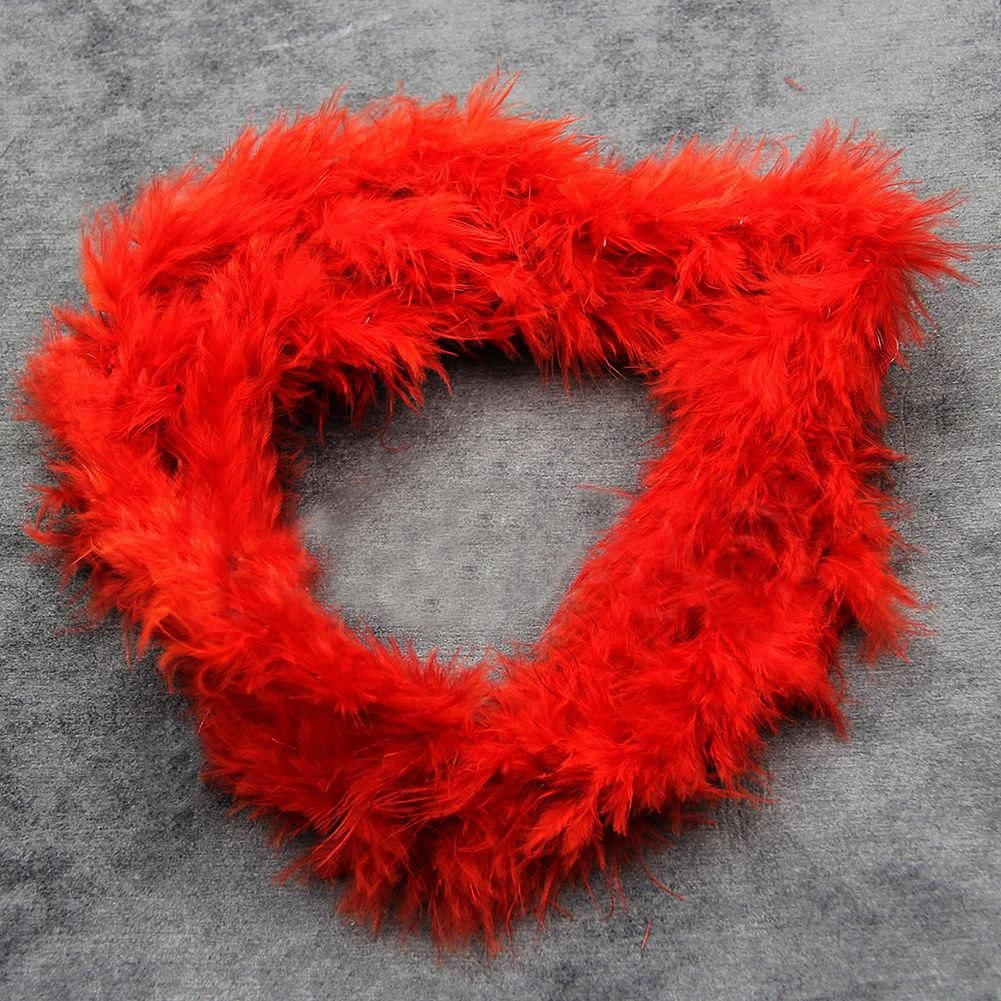 Photo of 2M Feather Boa Strip Fluffy Craft Costume Hen Night Dressup Wedding Fancy Party – Red