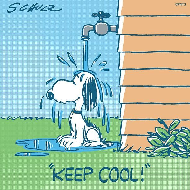 It's getting hot out there! Snoopy quotes, Snoopy