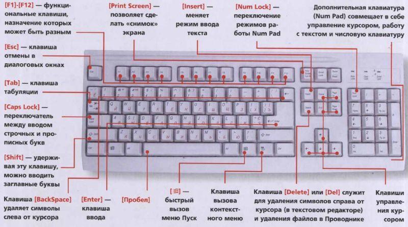 НАЗНАЧЕНИЕ КЛАВИШ НА КЛАВИАТУРЕ НОУТБУКА - клавиатура на ...