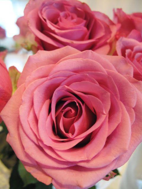 Hjem & Glede: Et snev av lilla...