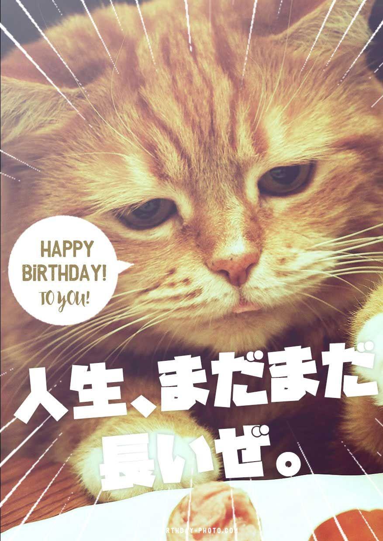 お誕生日おもしろお祝い画像 寄書き無料テンプレートのハピバフォト 誕生日画像 誕生日 画像 おもしろ 誕生日おめでとう メッセージ