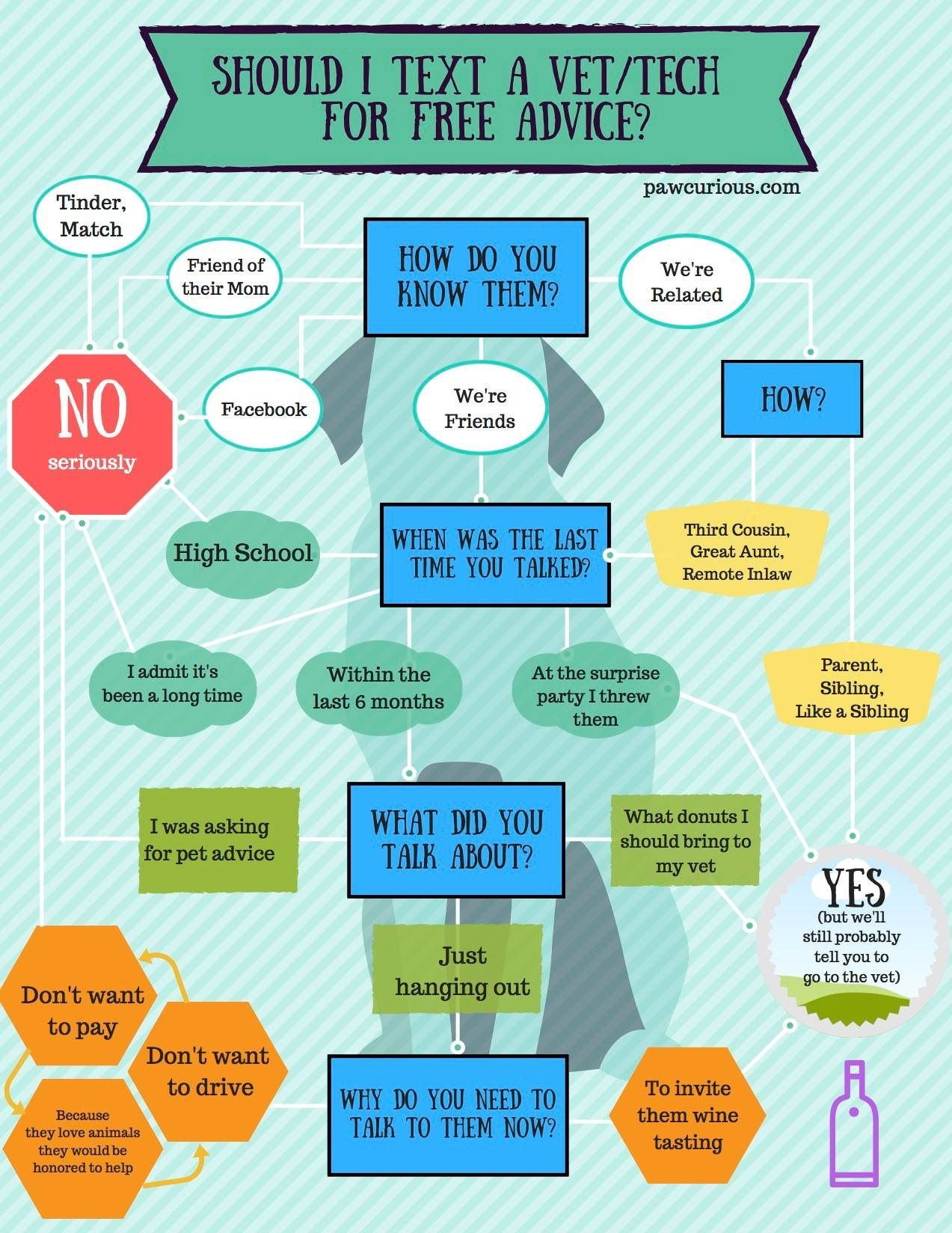 Veterinary Flowchart Free Advice Vets Veterinary Humor