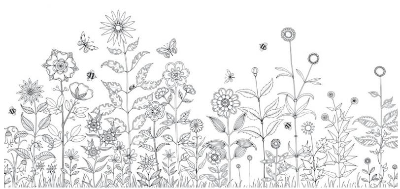 Kleurplaten Voor Volwassenen Mijn Geheime Tuin.Kleur En Zoekboek Mijn Geheime Tuin Coloring Pages Coloring