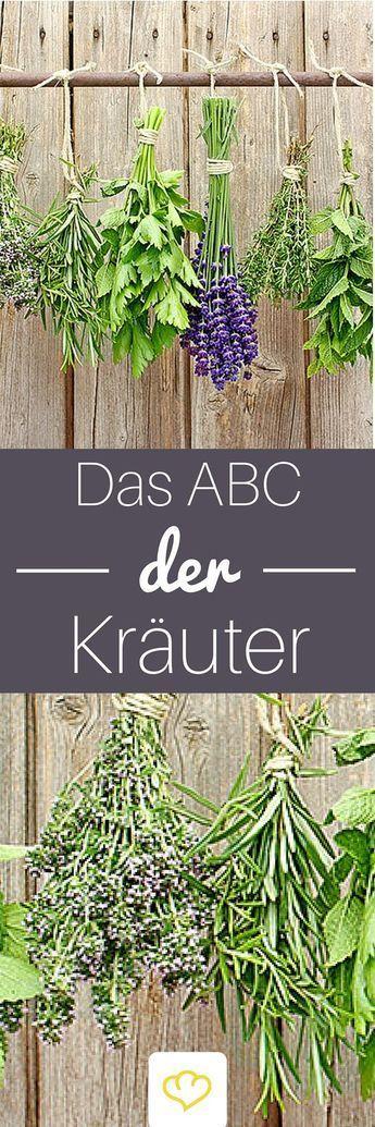 Das ABC der Kräuter