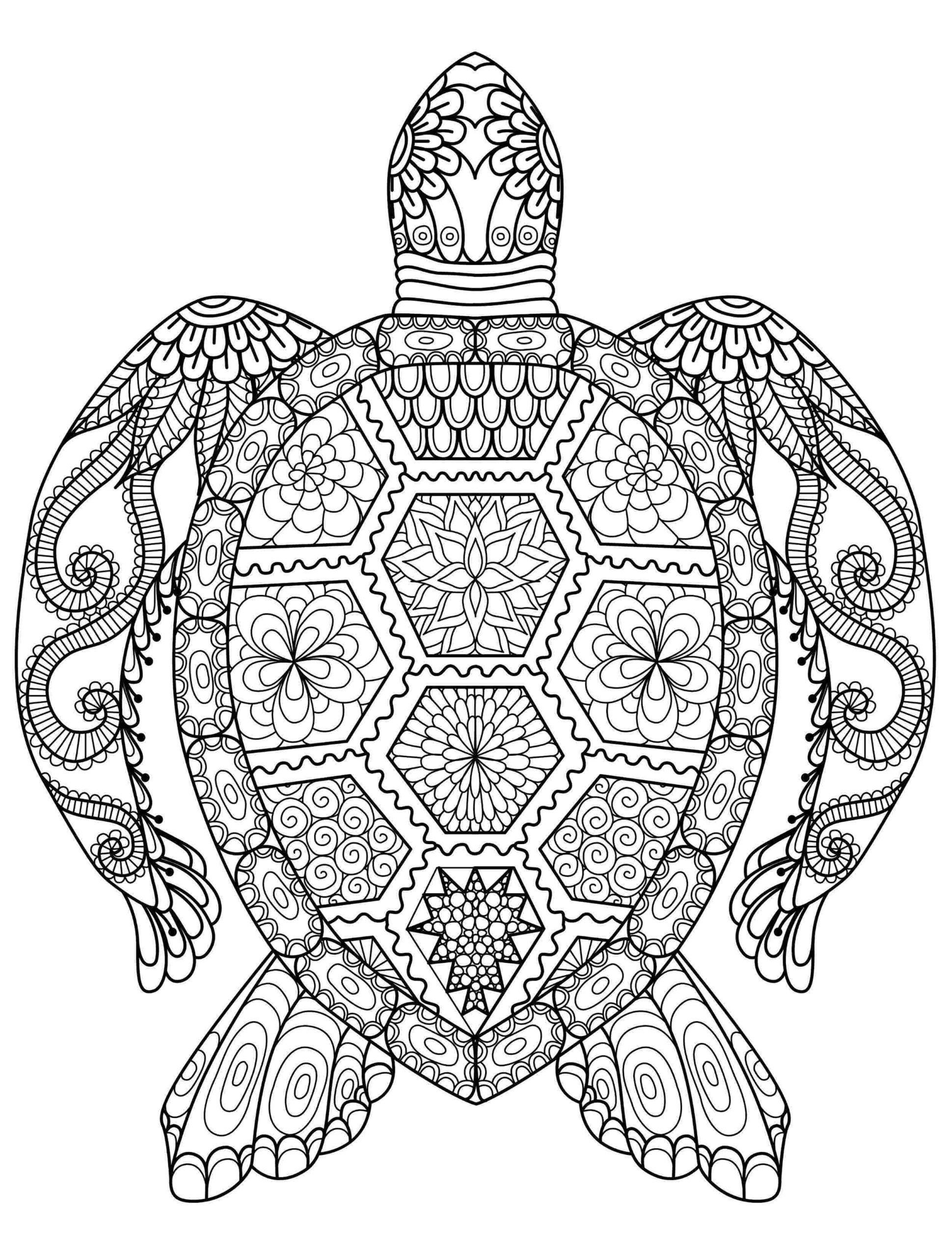 Free Online Mandala Coloring Pages Coloring Pages Mandala Coloring Names Free Printable Turtle Coloring Pages Cool Coloring Pages Free Coloring Pages