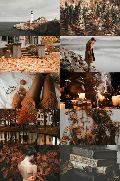 Autumn shared by Alice on We Heart It #collageboard