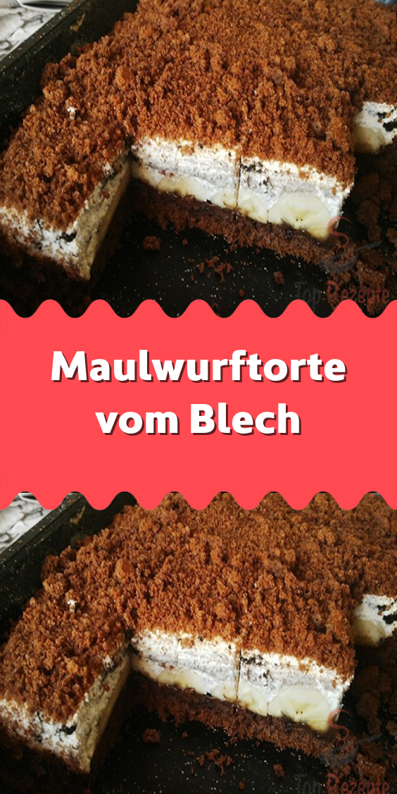 Photo of Mole cake from sheet metal – A tasty sheet cake that reminds us of the mole …