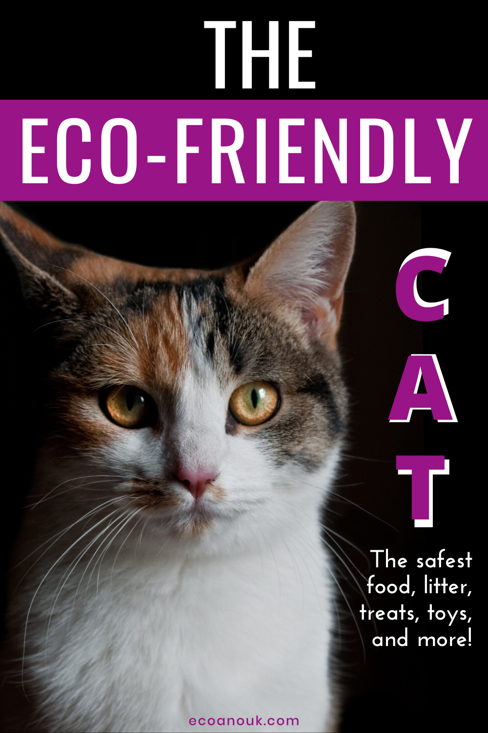 The Complete Guide To Sustainable Cat Care In 2020 Cat Care Cat Shampoo Natural Cat Litter