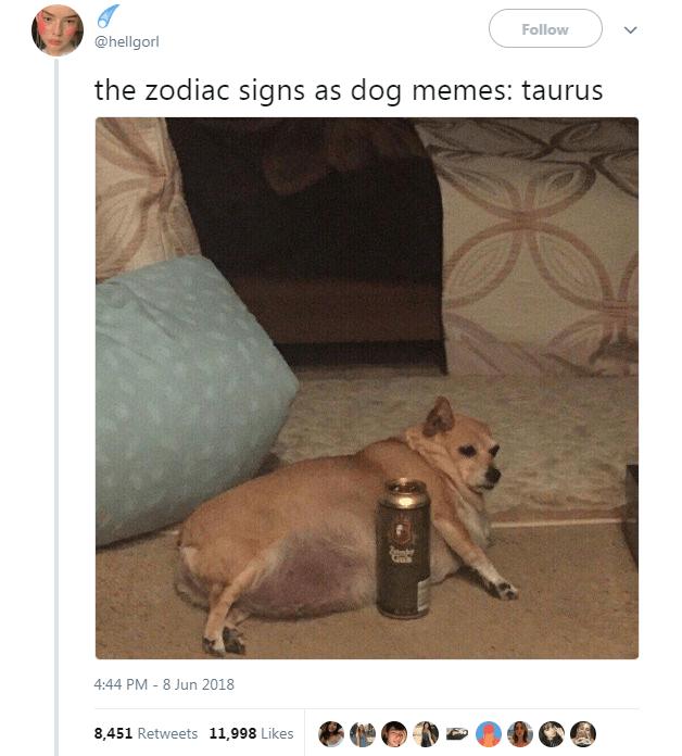 The 12 Zodiac Signs As Dog Memes In 2020 Dog Zodiac Dog Memes Zodiac Funny