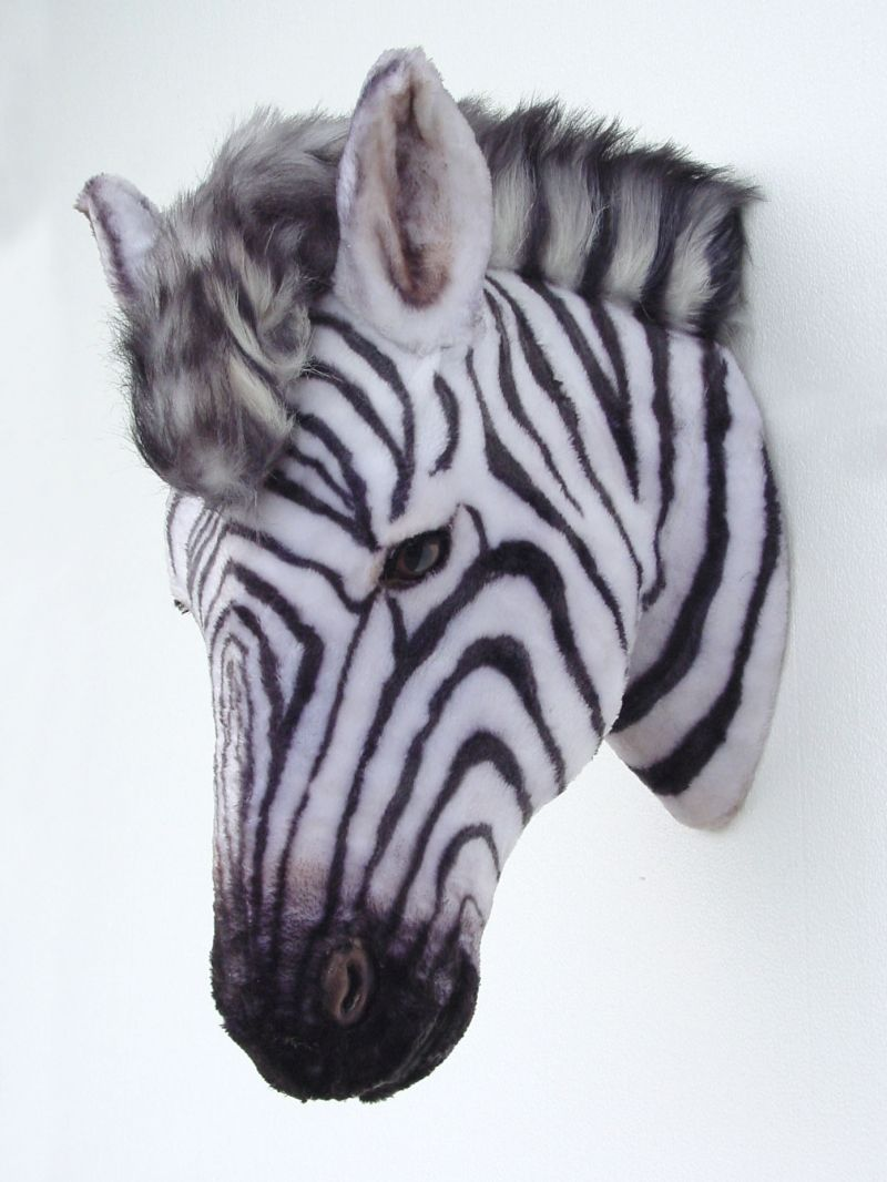 Zebra Head Wall Decor : Pop art decoration animals mounted heads zebra head