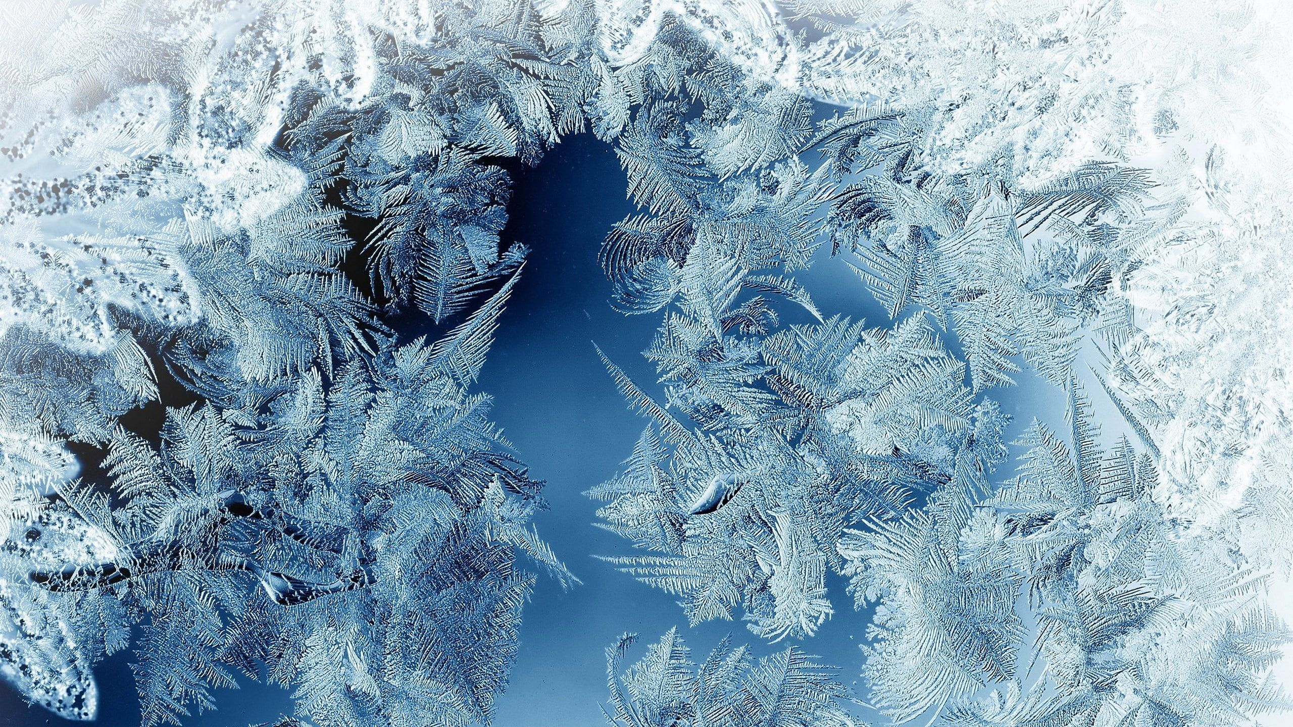 Frosted Glass Picture 2k Wallpaper Hdwallpaper Desktop Glass Pictures Wallpaper Glass Wallpaper