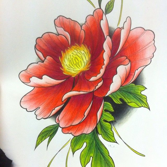 Pattern Flower Drawing With Colour Best 25 Flower Tattoo: #peony #flower #drawing #colour #pencil #art