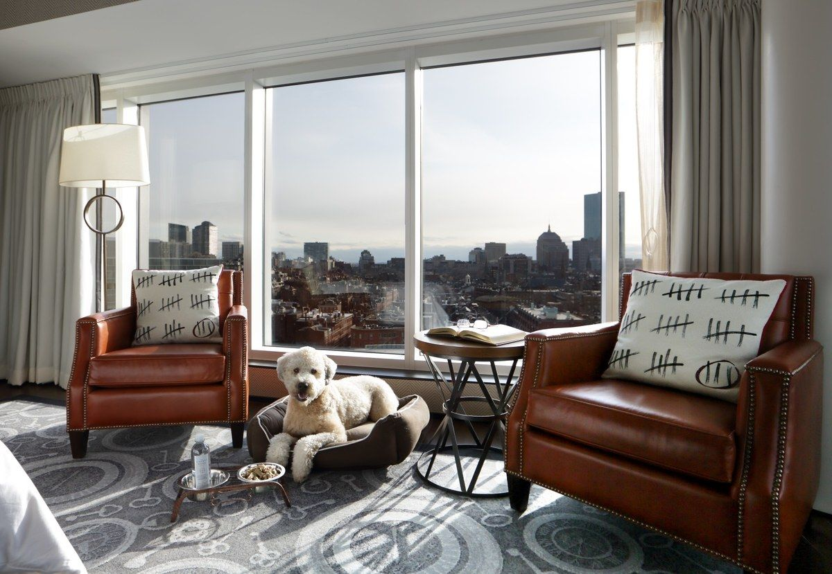 16 Pet Friendly Hotels That Both Dogs And Humans Will Love Pet Friendly Hotels Luxury Hotel Bedroom Luxury Hotel
