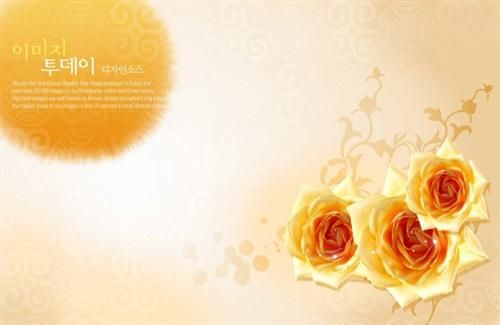 Rose Background Psd Template Photoshop Backgrounds Psd Template Free Wedding Background