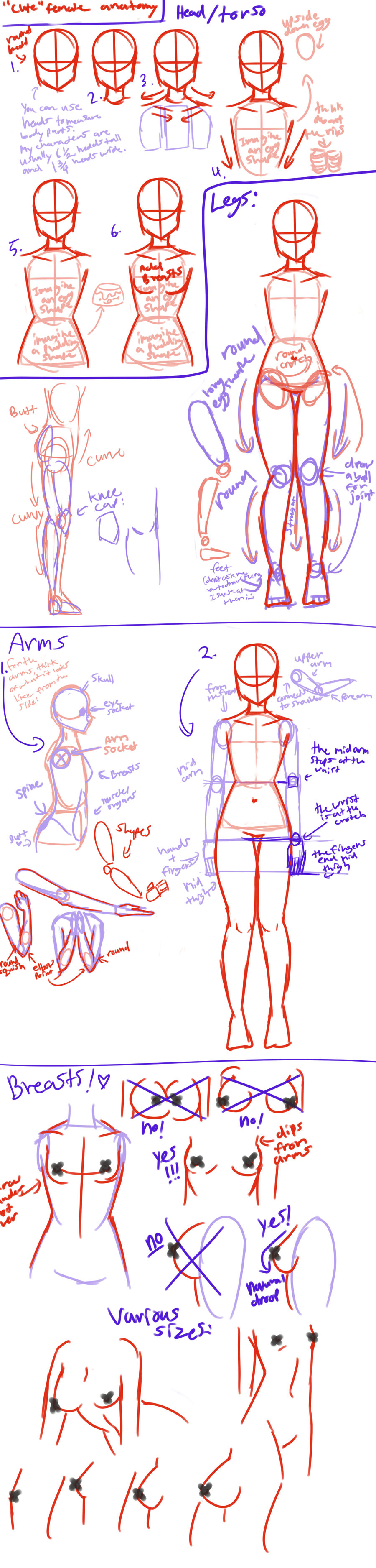 Cute female anatomy tutorial by angeliccarrot deviantart com on deviantart