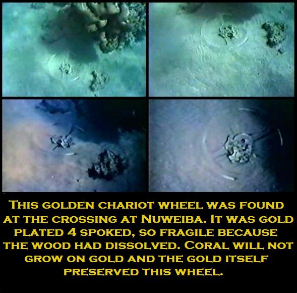 Chariot wheels found