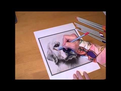 Grayscale coloring takes coloring to a whole new level. Coloring ...