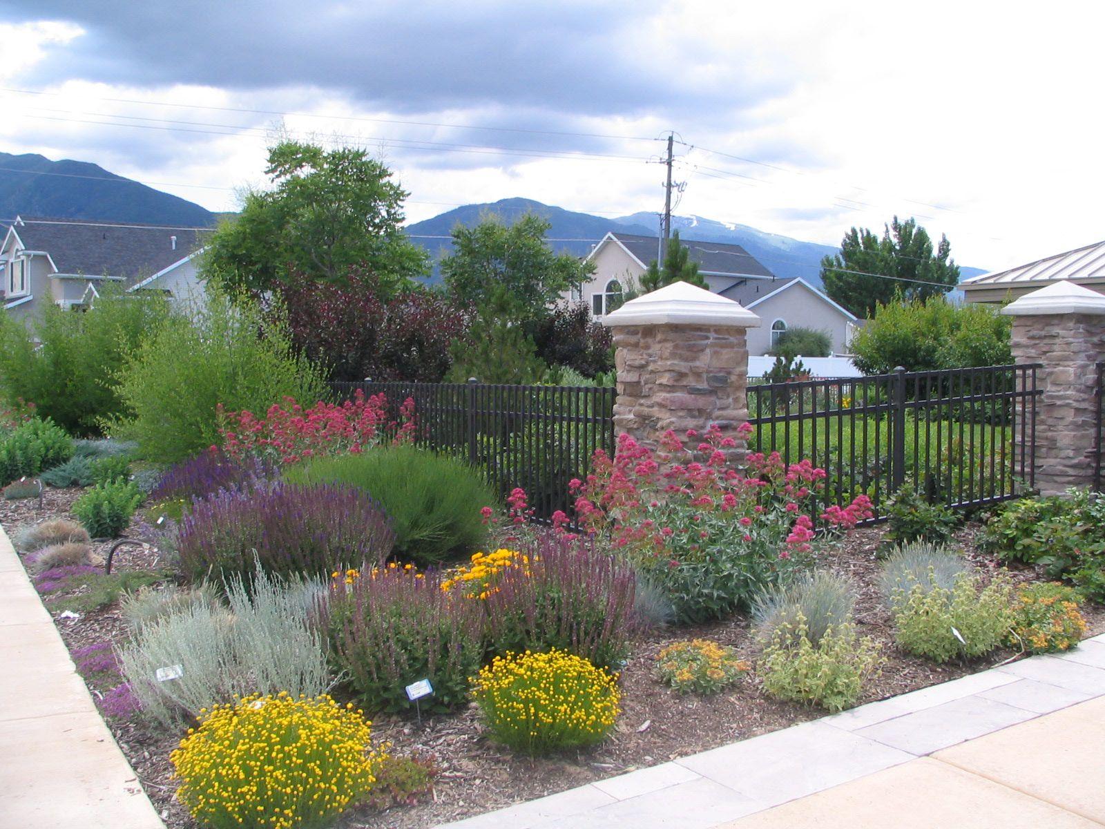 desert horticulture - dixie gardener - dixiegardener