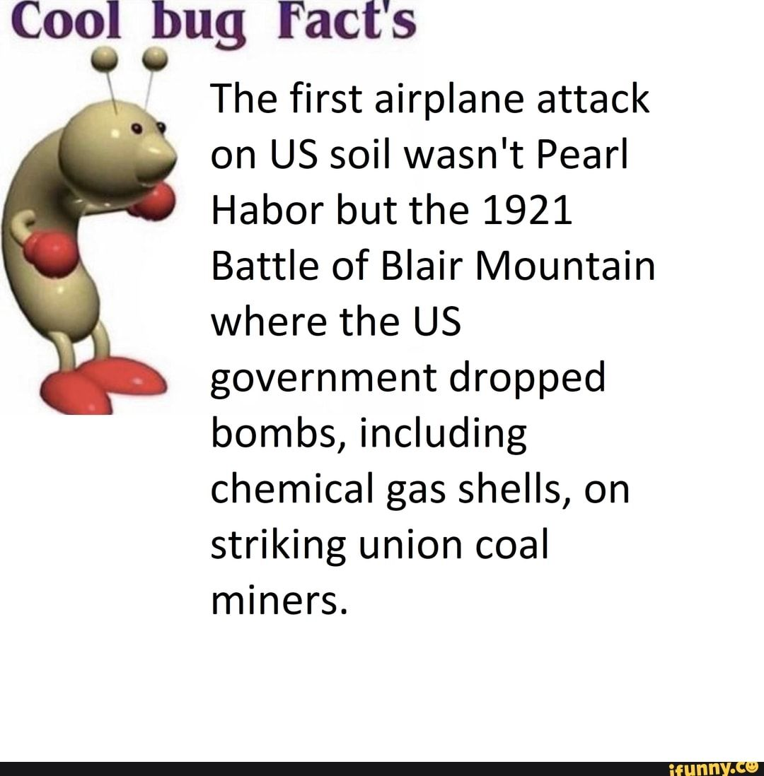 Picture memes wyq3TsX27: 18 comments — iFunny Cool bug Fact's ' U :X 0V0 The first airplane attack on US soil wasn't Pearl Habor but the 1921 Battle of Blair Mountain where the US government dropped bombs, including chemical gas shells, on striking union coal miners. – popular memes on the site