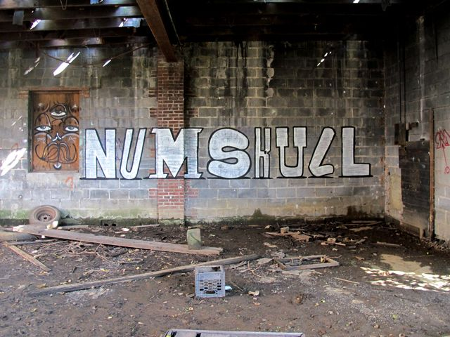 Numskull  New York
