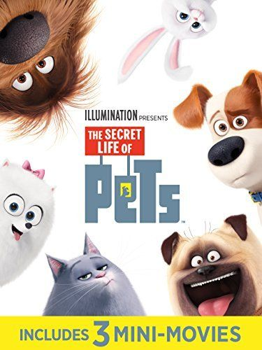 Find Out What Your Pets Do When You Re Not At Home In This Animated Comedy Featuring The Voice Talents Of Louis C K Secret Life Of Pets Secret Life Pets Movie