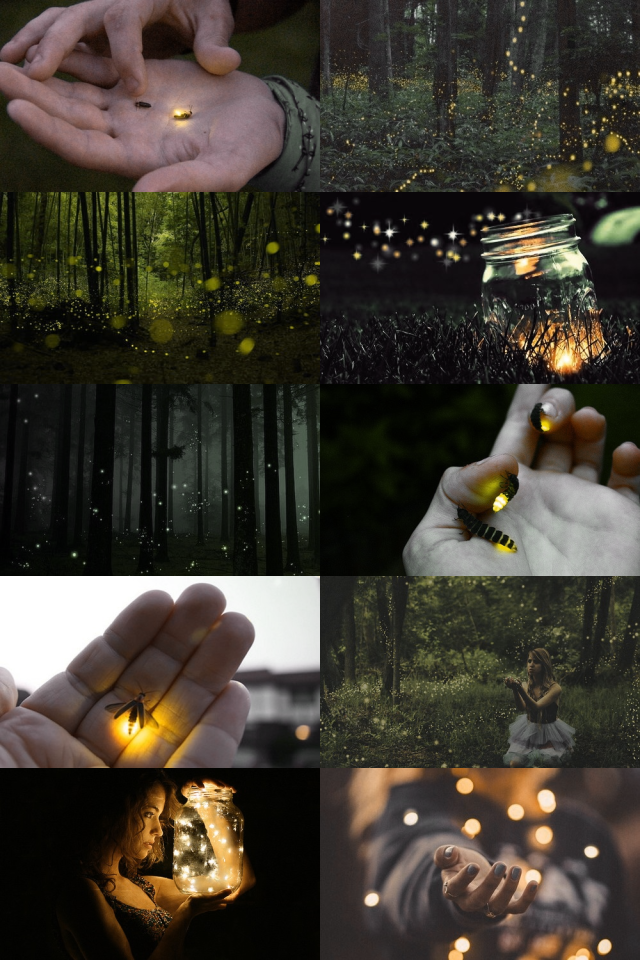 Hasil gambar untuk fireflies moodboard