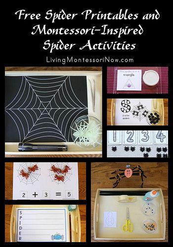 #SpiderUnit