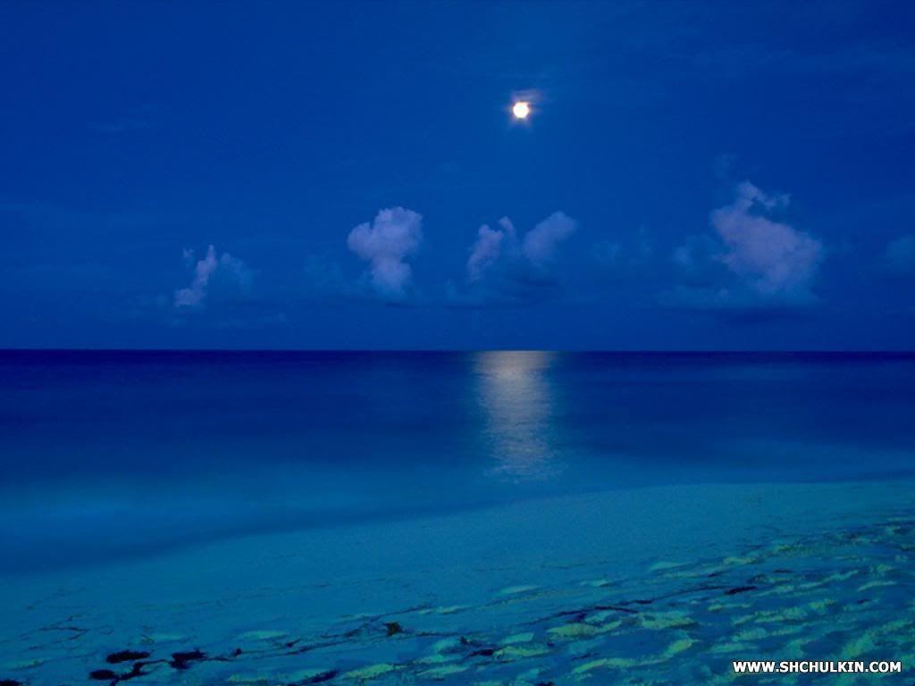 Moonlight Beach Encinitas Moonlight Beach Images Moonlight Beach Pictures Graphics Page Mexico Beaches Beach Wallpaper Beach Photos