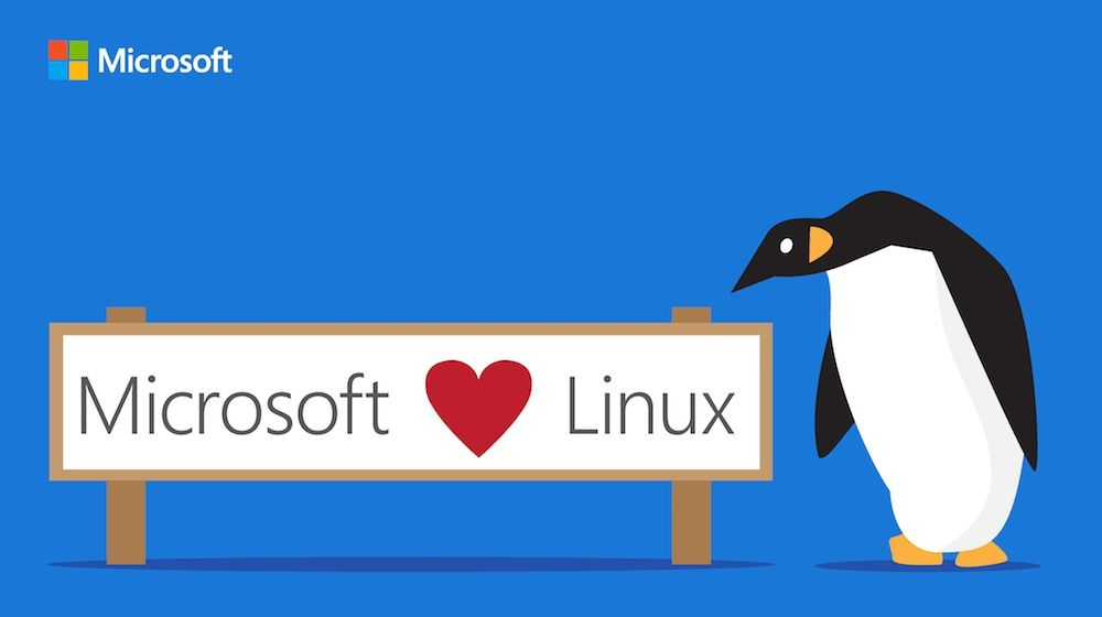 Microsoft Wants To Join Closed Linux List For Bug Reporting