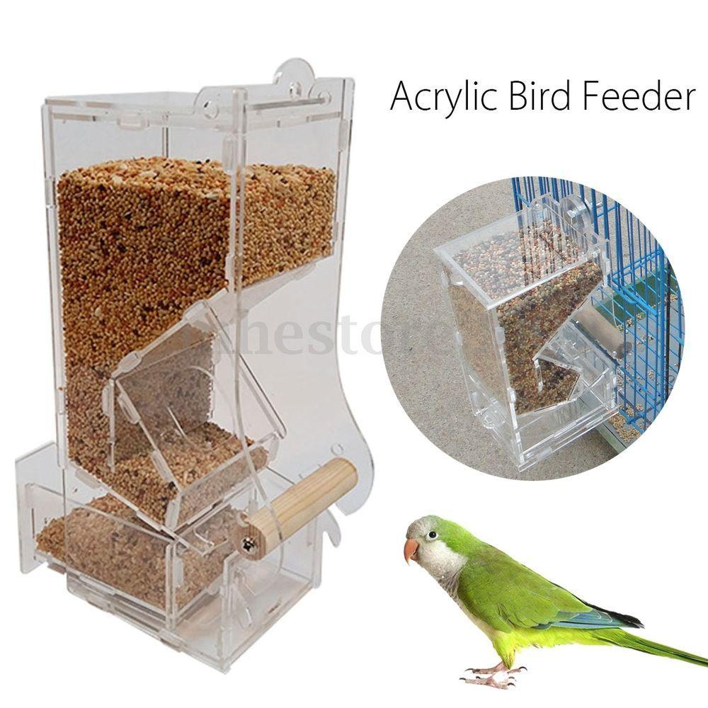 buy feeders bird supply gardener feeder s dewdrop acrylic window